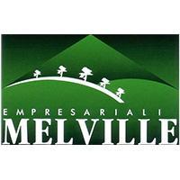 Logo de Melville Empresarial