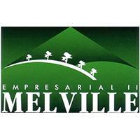 Logo de Melville Empresarial II